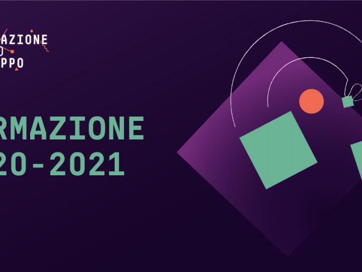 Dati, project manager e imprenditorialità. I percorsi di Innovazione per lo Sviluppo 2020-2021